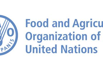 Off-campus Visit at FAO - Food and Agriculture Organization of the United Nations