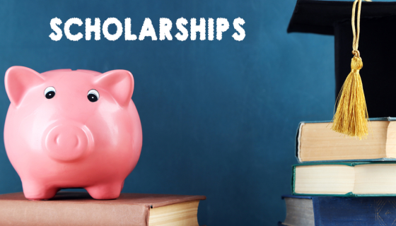 Laziodisco scholarship - Call for application (ENGLISH)